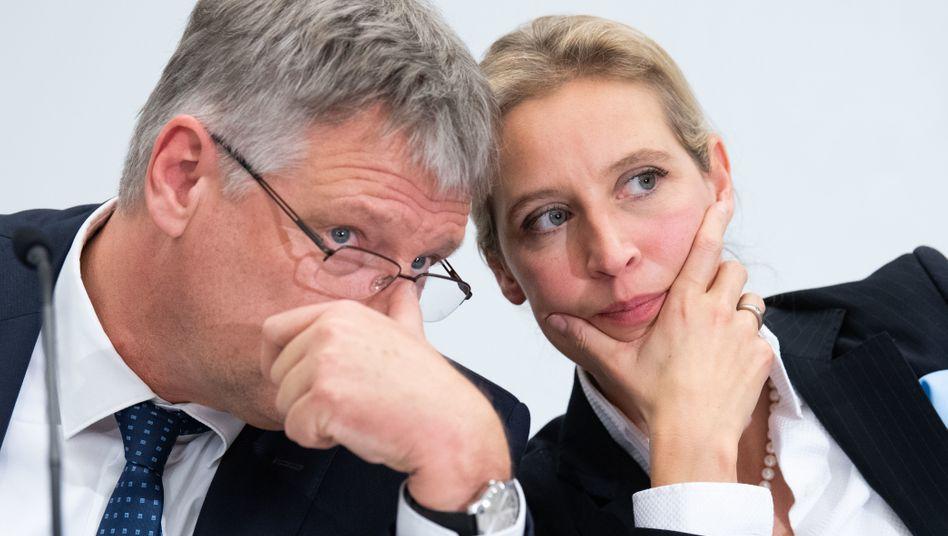 AfD-Co-Chef Jörg Meuthen und Co-Fraktionschefin Alice Weidel (Archivfoto)
