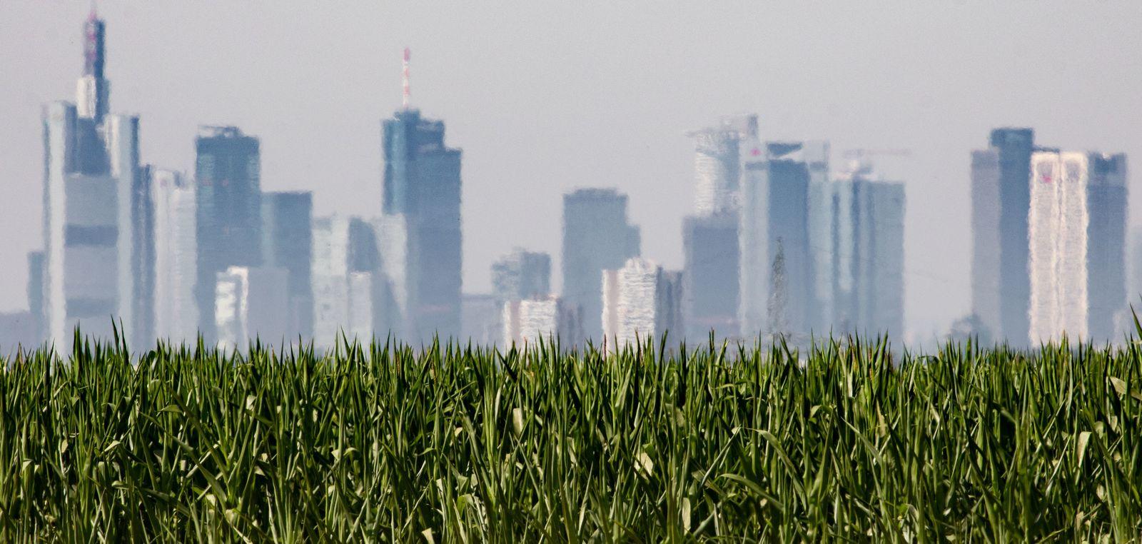 Immobilien Frankfurt am Main