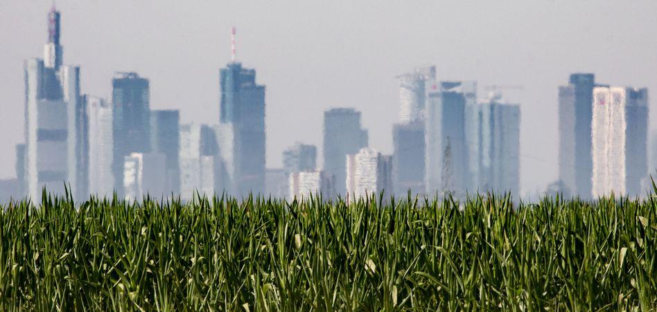 Skyline in Frankfurt am Main: Experten sehen eine Überhitzung des europäischen Immobilienmarktes