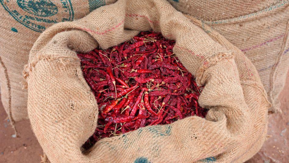 Ein Sack mit Chilis auf einem Markt in Indien