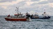 Deutsche Fischer fürchten Kabeljau-Streit mit Norwegen