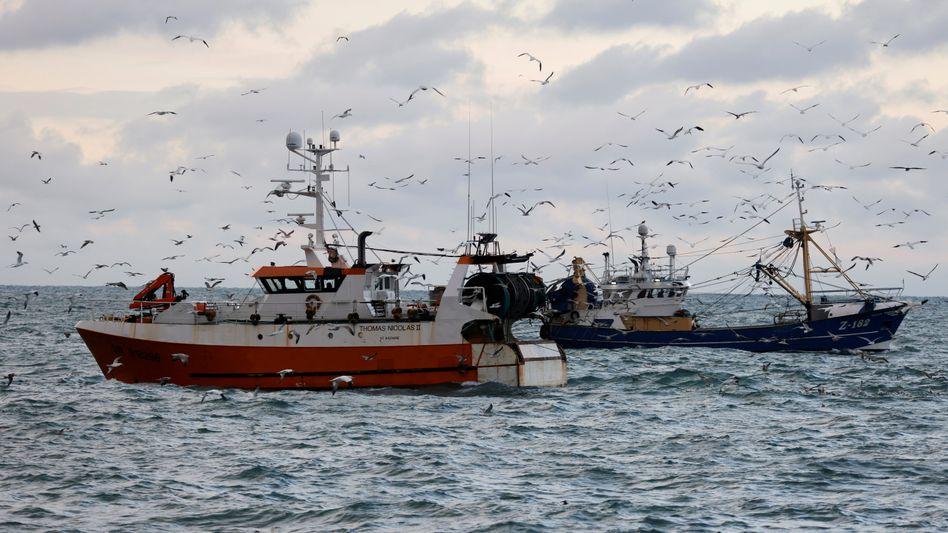 Fischtrawler auf der Nordsee (Archivbild): Streit um Fangrechte