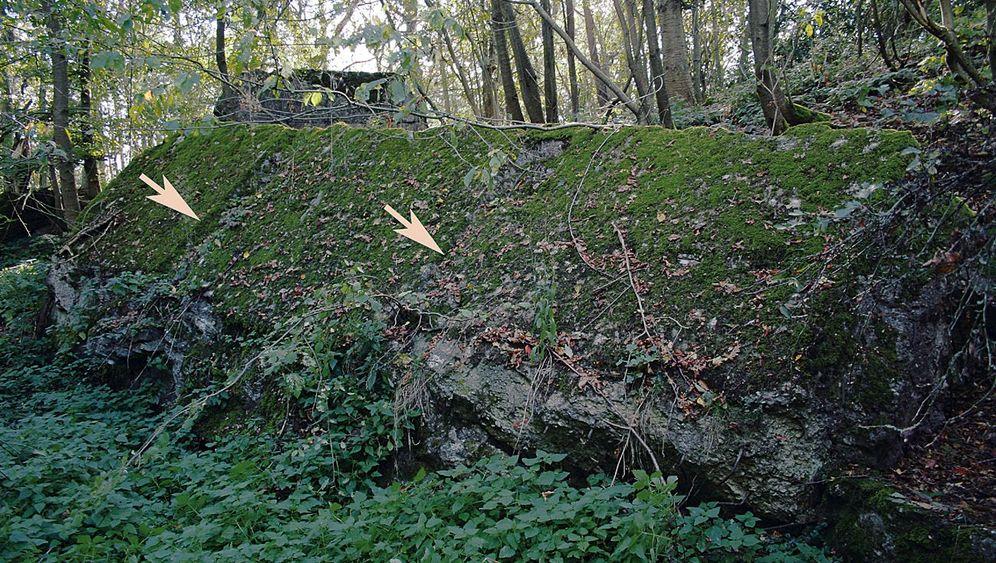 """Das """"Felsennest"""": Hitlers Kommandozentrale im Wald"""