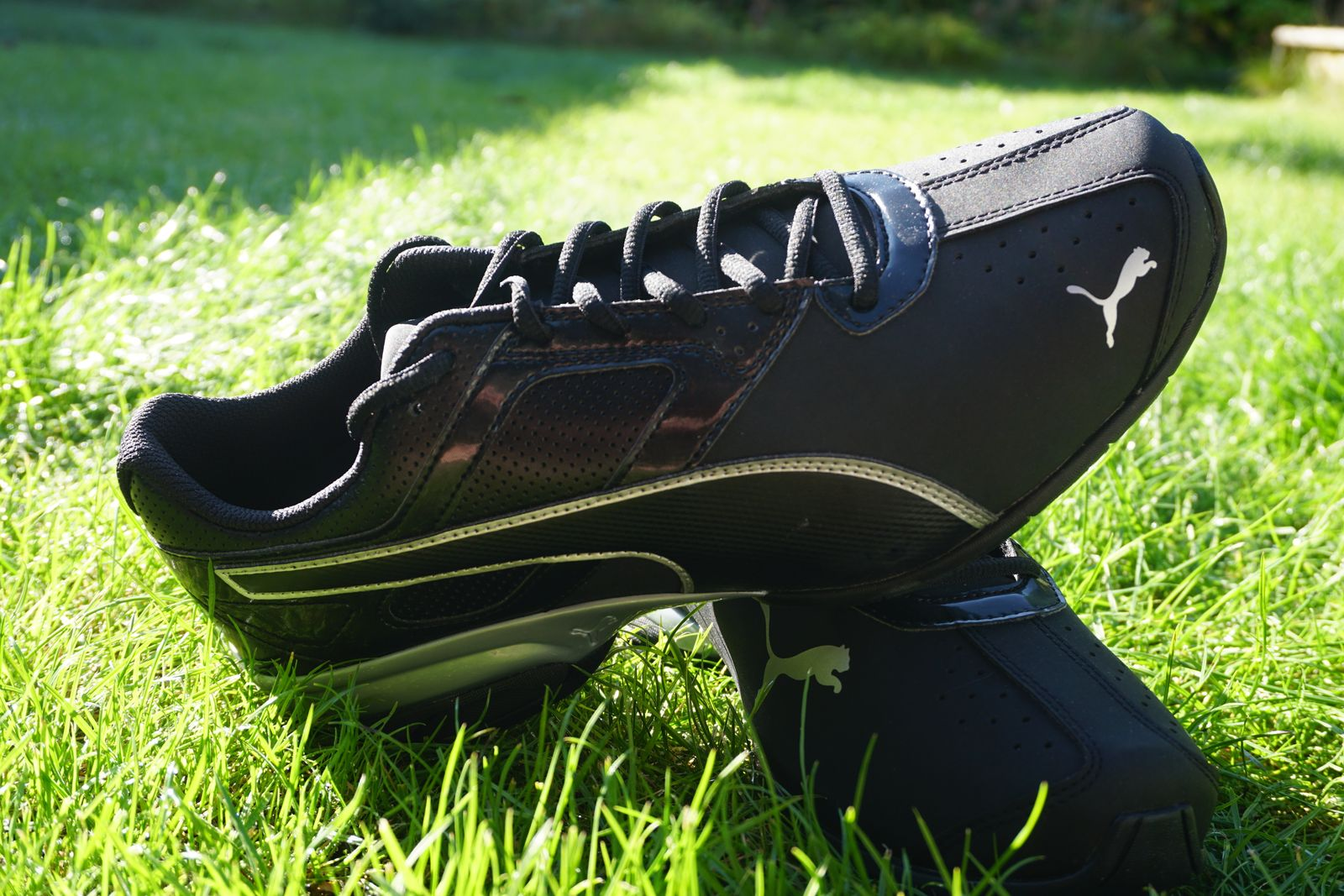 Laufschuh-Test