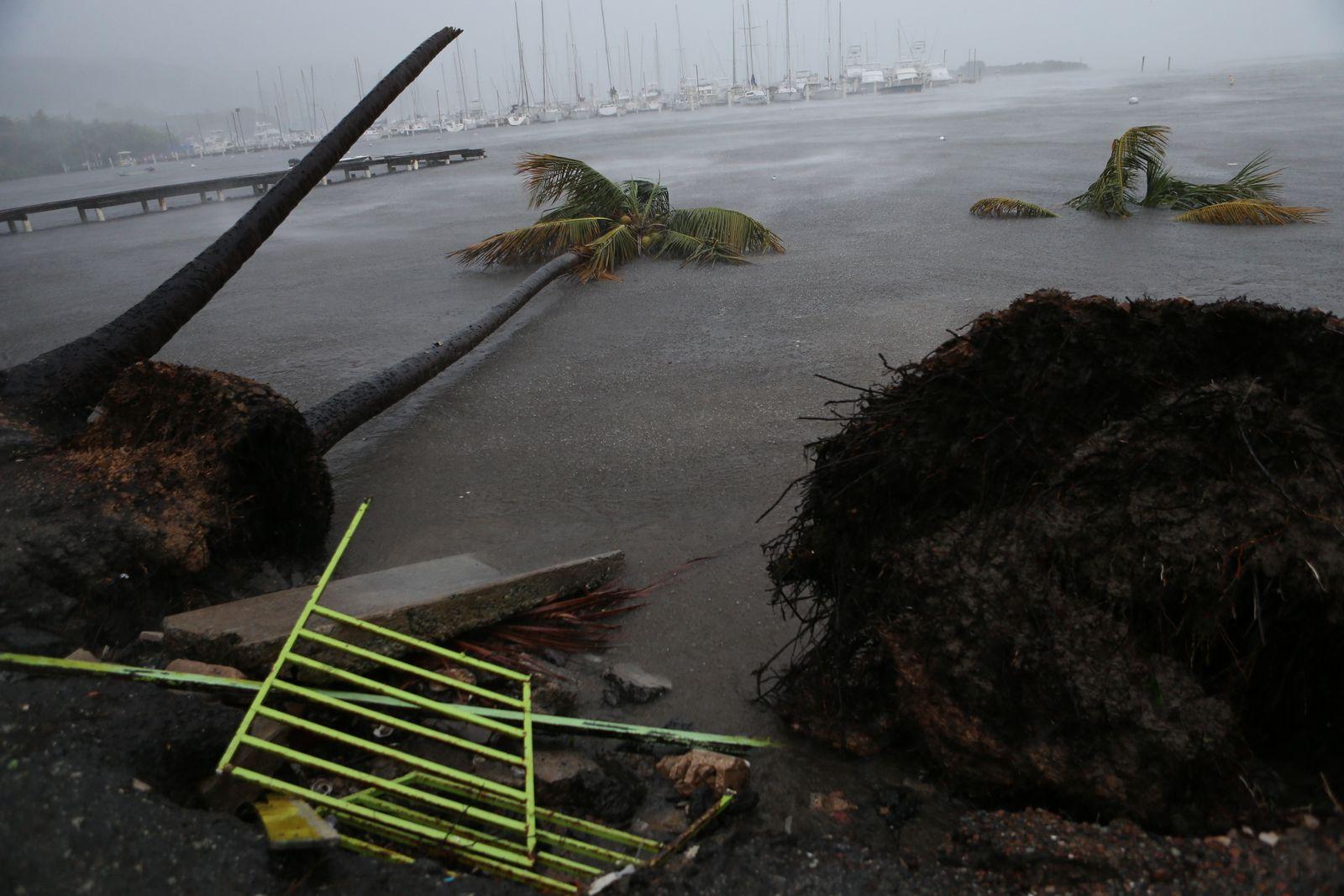 Hurikan/ Irma/ Puerto Rico