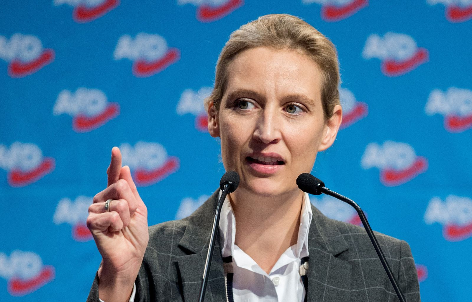 AfD -Alice Weidel