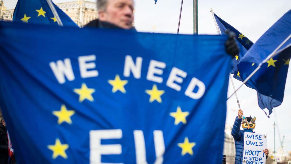 Pro-EU-Demonstrant (in London)