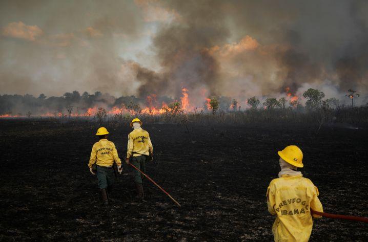 Feuerwehrleute im brasilianischen Amazonasgebiet