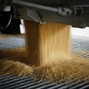 Biosprit-Produktion in den USA: Forscher warnen vor ökologischen Konsequenzen