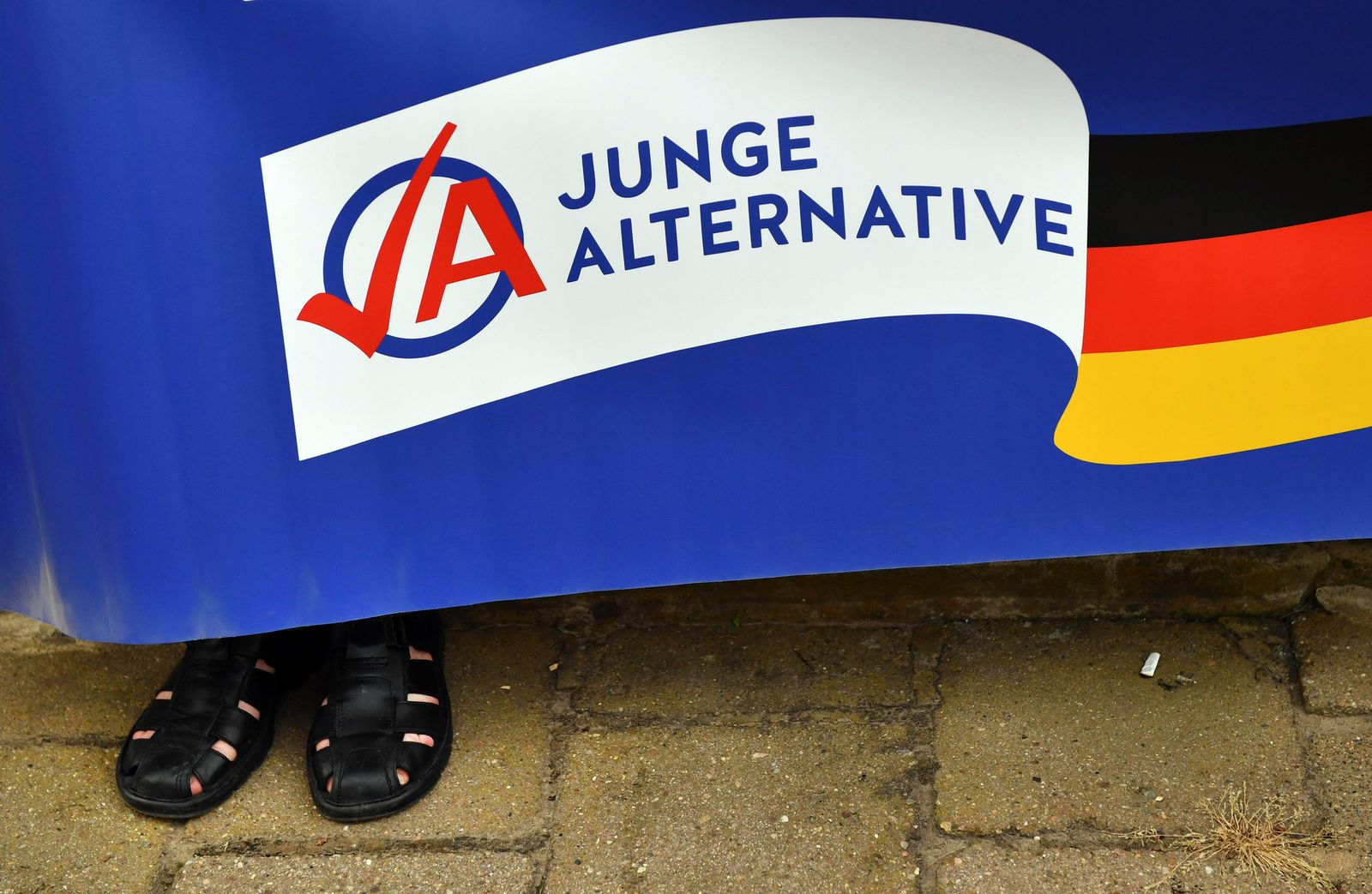 Junge Alternative / AfD