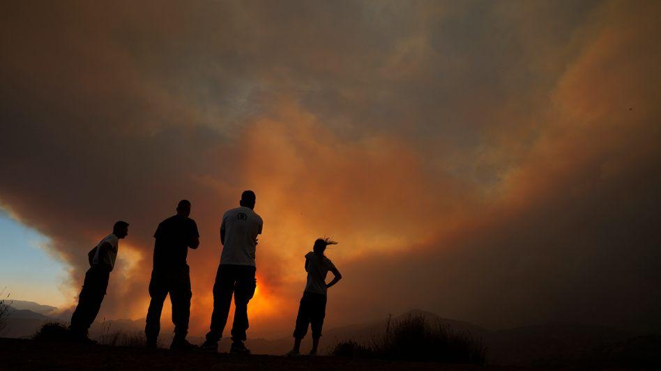 Mehrere Häuser zerstört: Auf Zypern blicken Anwohner auf das Feuer in den Bergen von Larnaka