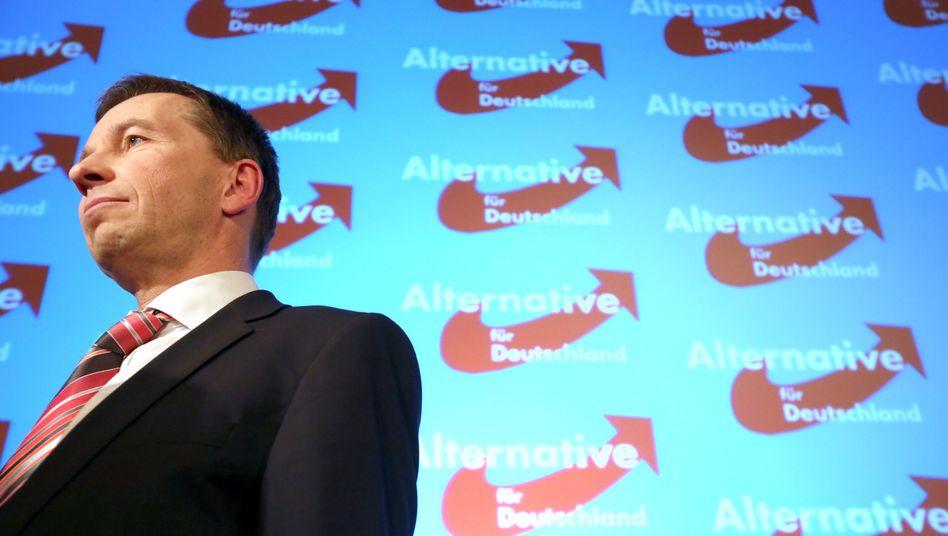 AfD-Chef Bernd Lucke: Seine Partei machte 2013 satten Überschuss