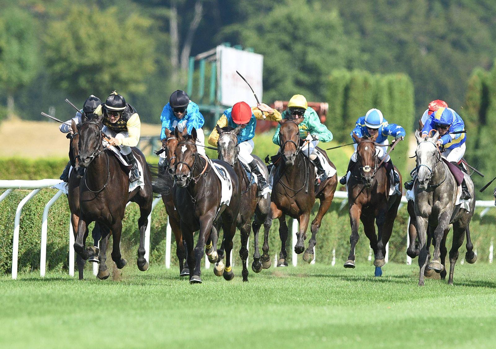 EINMALIGE VERWENDUNG Galopprennen/ Pferderennen