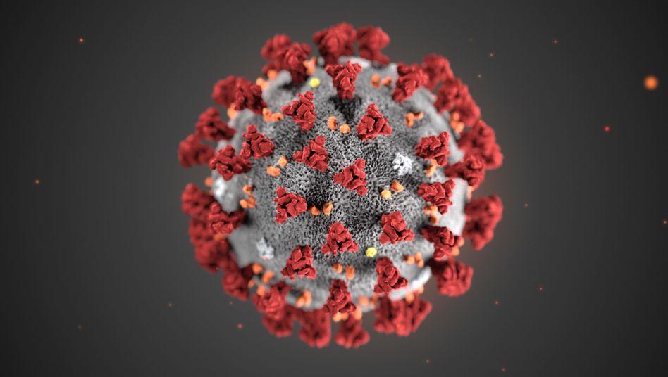 Bildresultat för coronavirus