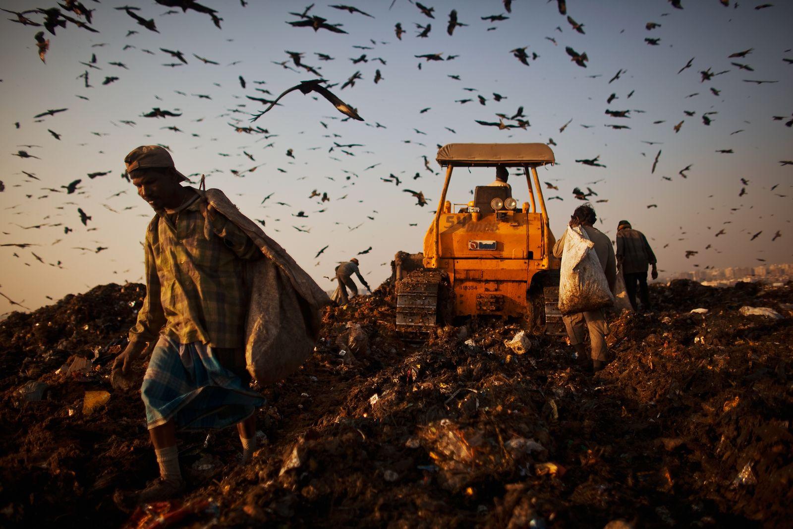 Indien / Müllkippe