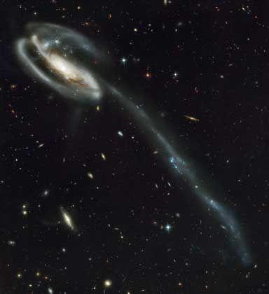 """Schwanz aus Sternen: Die Kaulquappen-Galaxie (UGC 10214) im Sternbild Drache ist durch die Kollision mit einem kleineren Begleiter aus den Fugen geraten, der als blauer Fleck am oberen linken Rand der Spirale zu erkennen ist. Der kosmische Zweikampf in rund 420 Millionen Lichtjahren Entfernung spielt sich vor einem spektakulären Hintergrund aus weiteren 6000 Galaxien ab - doppelt so viele wie auf der legendären """"Deep Field""""-Aufnahme, die Hubble 1995 mit altem Instrumentarium anfertigte."""