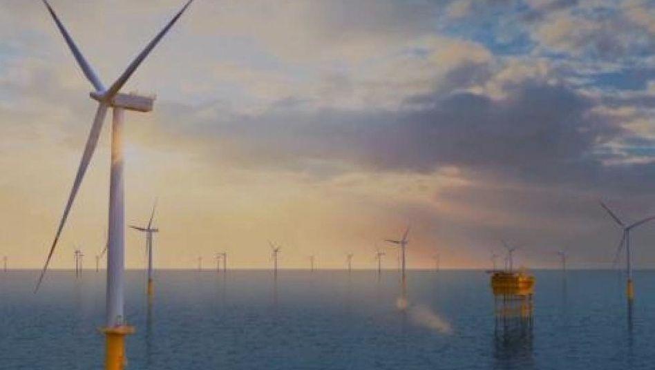 3-D-Animation des Windparks Butendiek