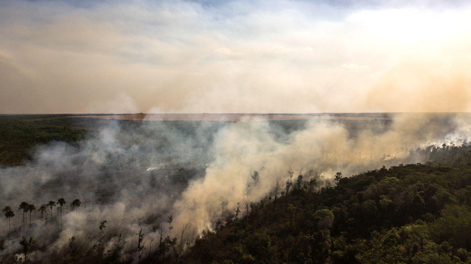 Brasilien / Umweltschutz