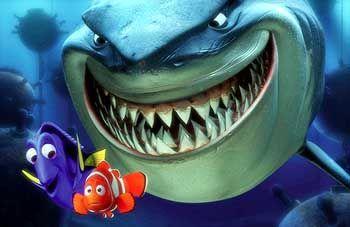 Findet Nemo: Die zweidimensionalen Artgenossen sterben aus