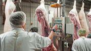 Kabinett beschließt Verbot von Werkverträgen in der Fleischindustrie