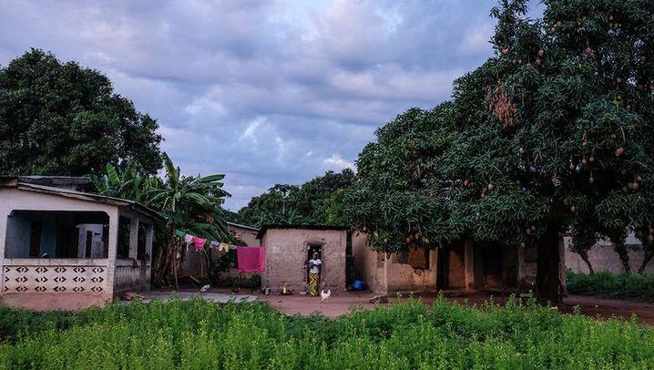Ebola in Guinea: Die Zeugen