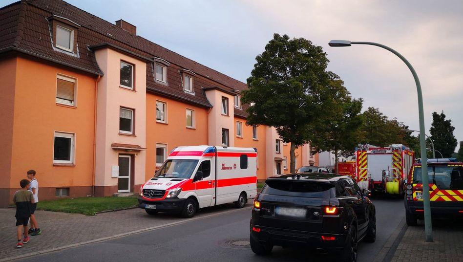 Einsatzort in Herne: Schlange bitte auf keinen Fall anfassen
