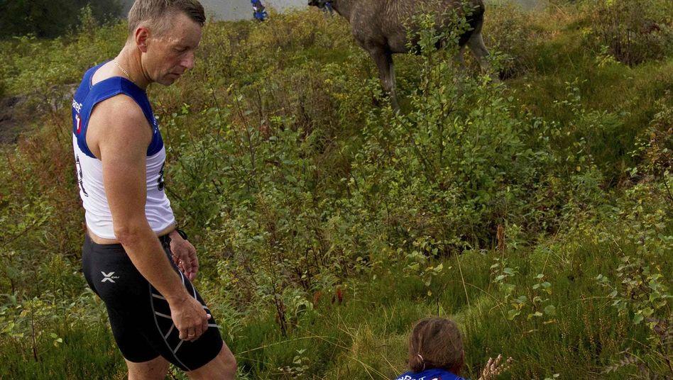 Elch-Attacke in Norwegen: Eine Läuferin verletzt