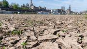 Deutscher Wetterdienst warnt vor Temperaturanstieg um bis zu vier Grad