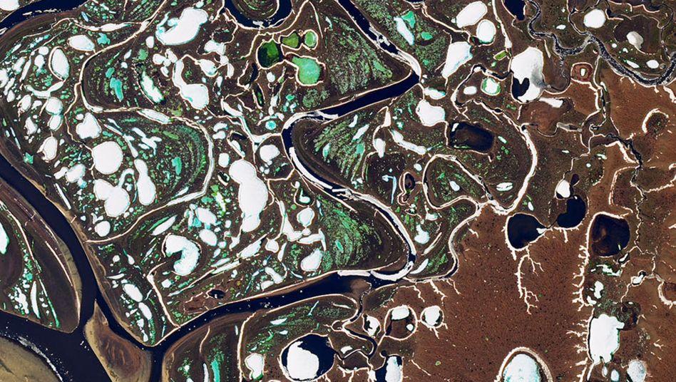 Schmelzendes Eis im Lenaflussdelta in der russischen Arktis