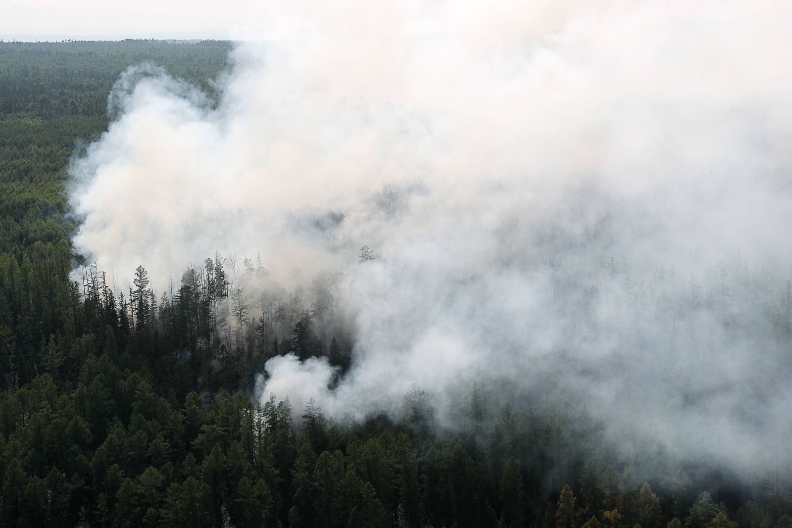 KRASNOYARSK TERRITORY RUSSIA AUGUST 4 2019 A view of a forest fire in Boguchany District over