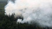 Erneut große Waldbrände im Norden Russlands