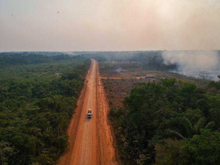 Waldbrände im Amazonasgebiet: Ökologischer und klimatischer Kollaps