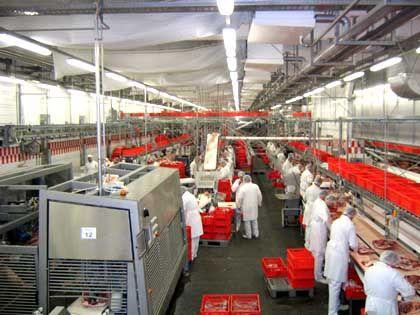 Tönnies Fabrik