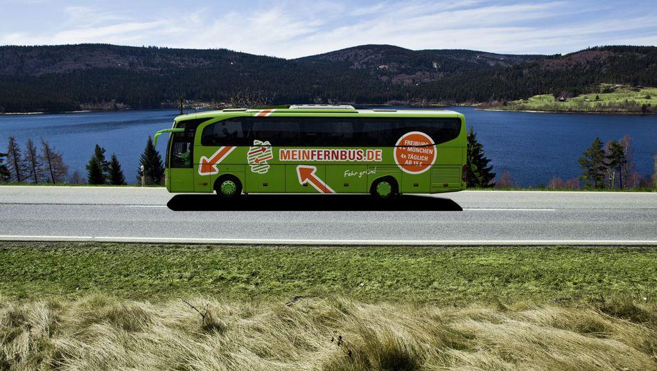 Fernbus im Schwarzwald: Branche in Aufbruchstimmung