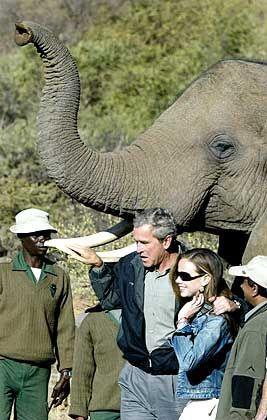 Streicheleinheiten danach: Bush mit dem Wappentier seiner Partei