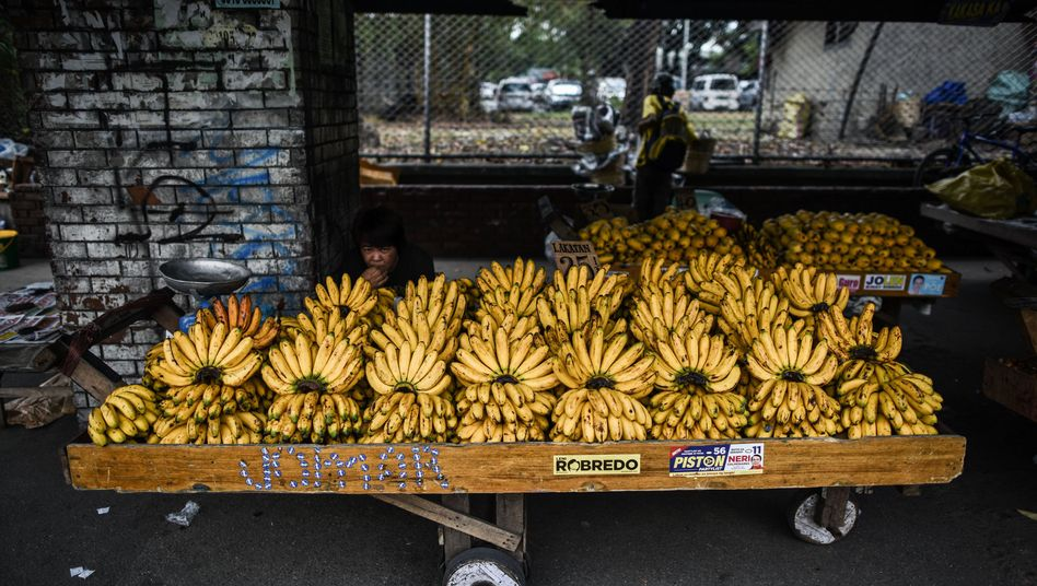 Beliebtestes Fair-Trade-Produkt: Bananen
