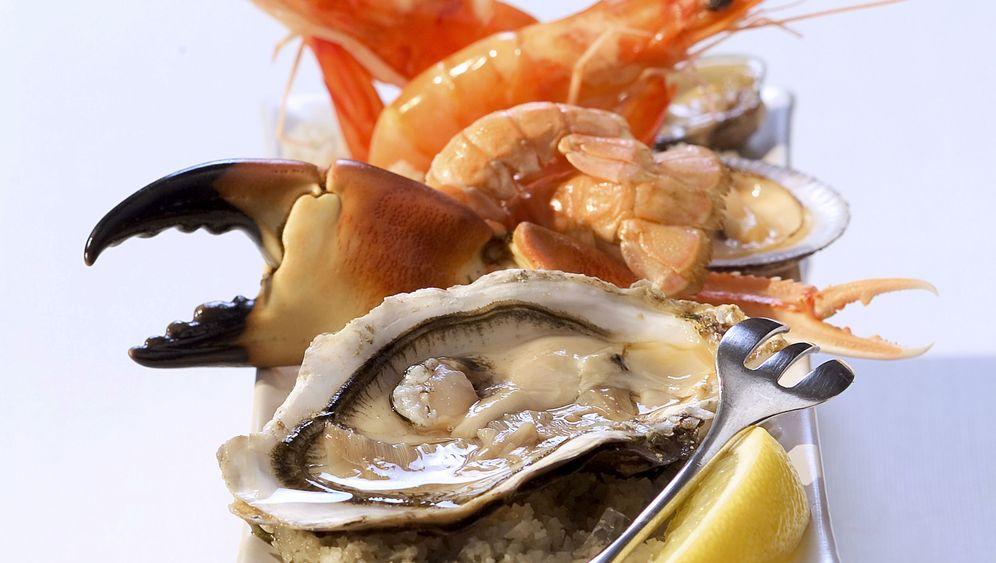 Bretagne: Paradies für Meeresfrüchte-Fans