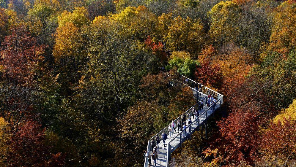 Wetter: Goldener Oktober bringt Temperaturrekorde