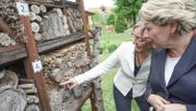 Umweltministerium legt Plan zum Insektenschutz vor