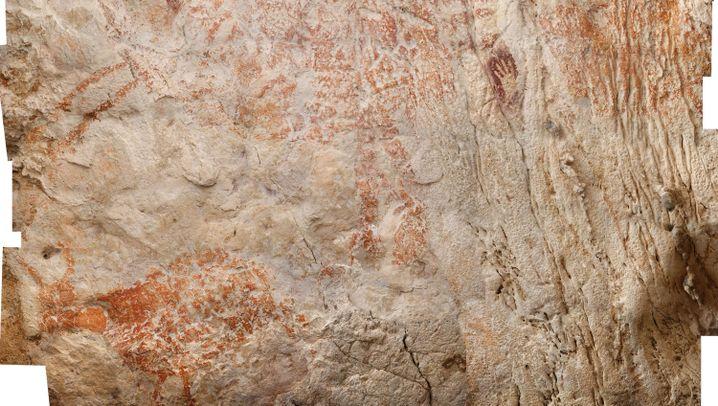 Borneo: Das Urzeit-Vieh aus der Höhle