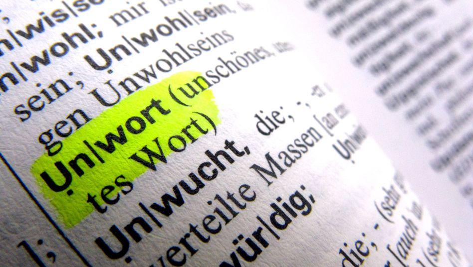 """""""Unwort""""-Definition in Wörterbuch: Mit Begriffen werde """"gezielt Stimmung gemacht"""""""