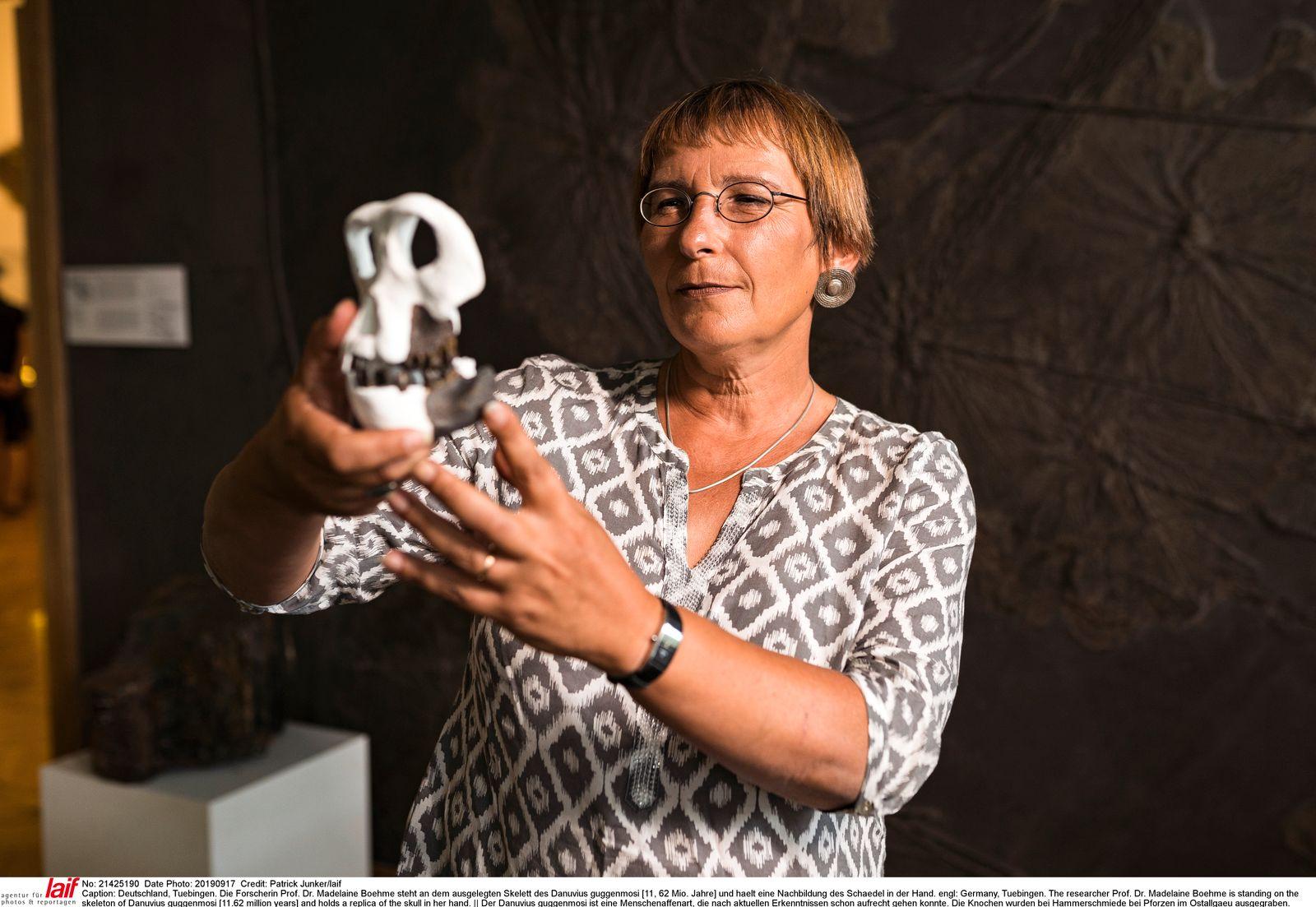 Fund eines Menschenaffen / Forscherin Madeleine Boehme