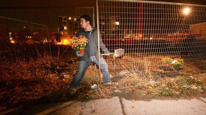 Kampf ums Großstadt-Paradies: Illegale Blumen