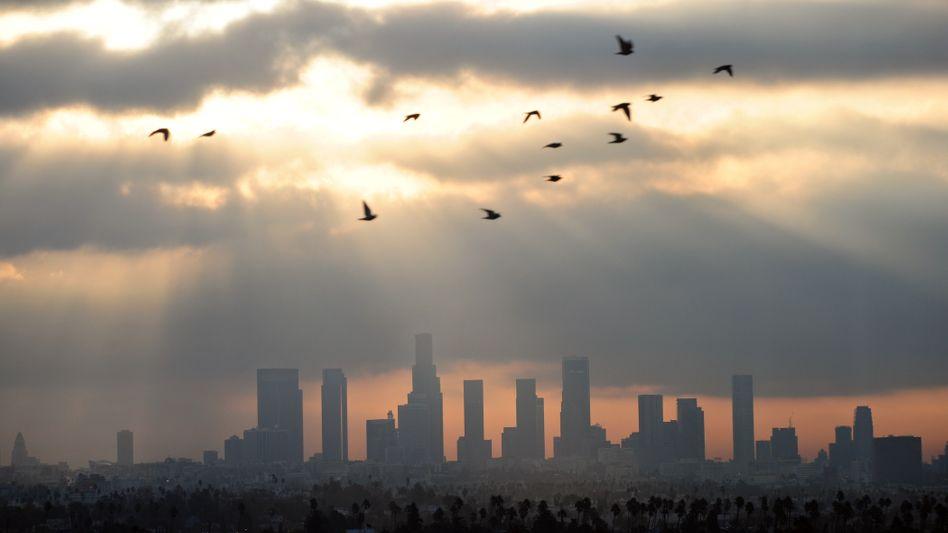Skyline von Los Angeles: Gewaltiger Absatzmarkt - mit rigiden Vorschriften