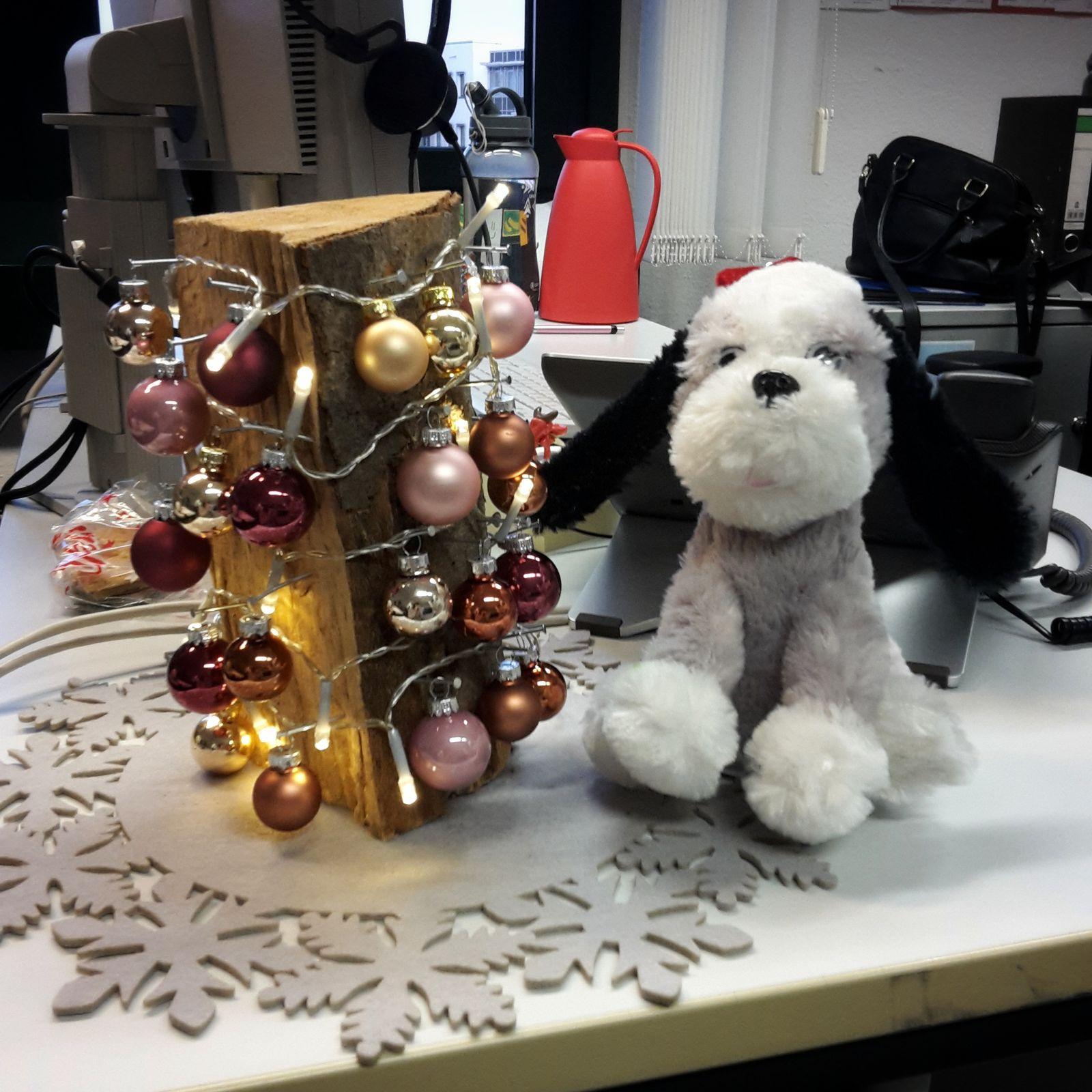 EINMALIGE VERWENDUNG Weihnachtsdeko im Büro / Leserfoto
