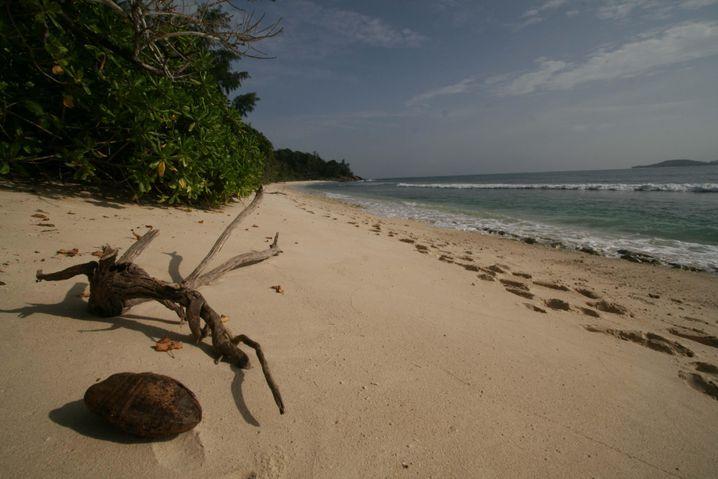 Seychellen: Viel Wärme für Winterflüchtlinge