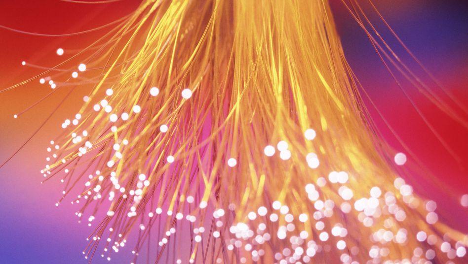 Glasfaser (Symbolbild): Licht ins Prism-Dunkel