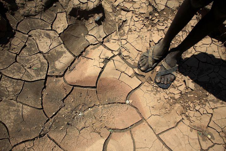 Dürre in Kenia im Jahr 2009