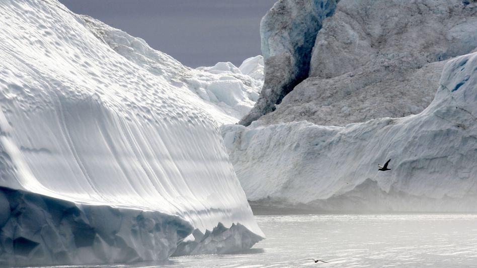 Eisberge vor Grönland: Süßwasserpool in den vergangenen Jahren entstanden