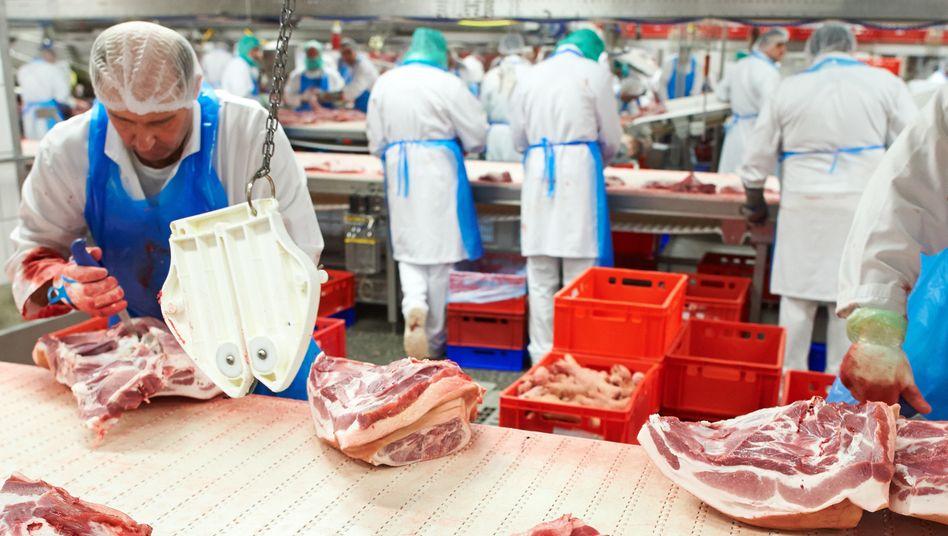 Mitarbeiter des Fleischunternehmens Tönnies arbeiten im Werk in Rheda-Wiedenbrück (Nordrhein-Westfalen) an einem Fließband: harte körperliche Arbeit bei kühlen acht bis zehn Grad